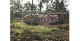 Lachlan Shire farmers embrace drumMUSTER
